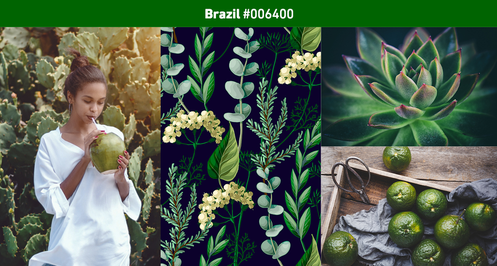 2019 Color Trends – Brazil
