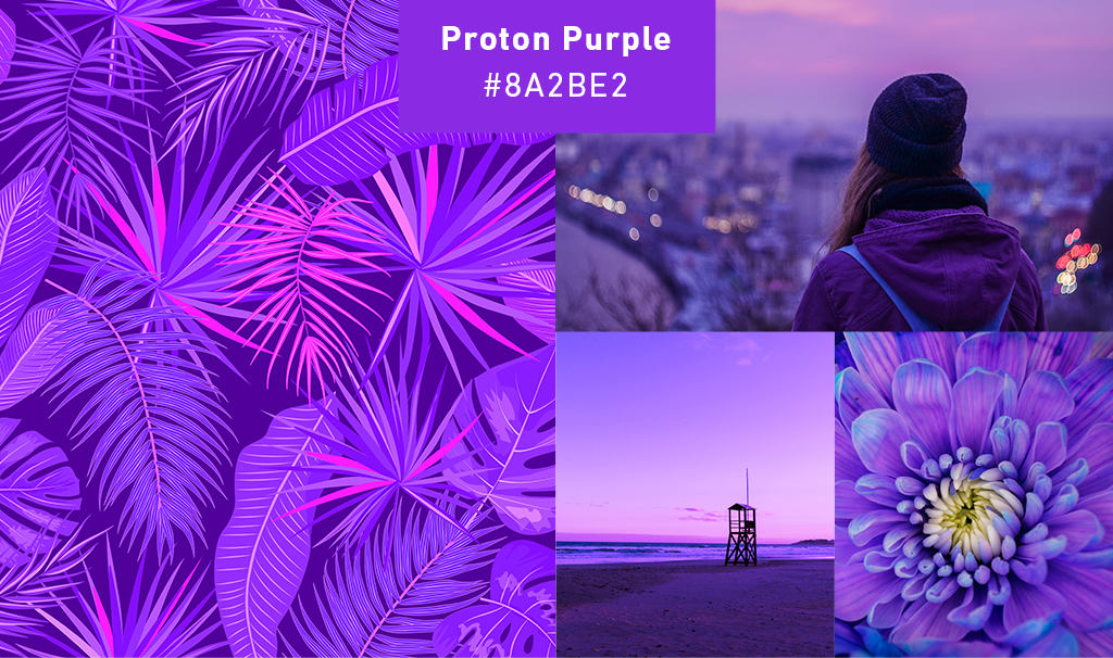 2019 Color Trends – Proton Purple