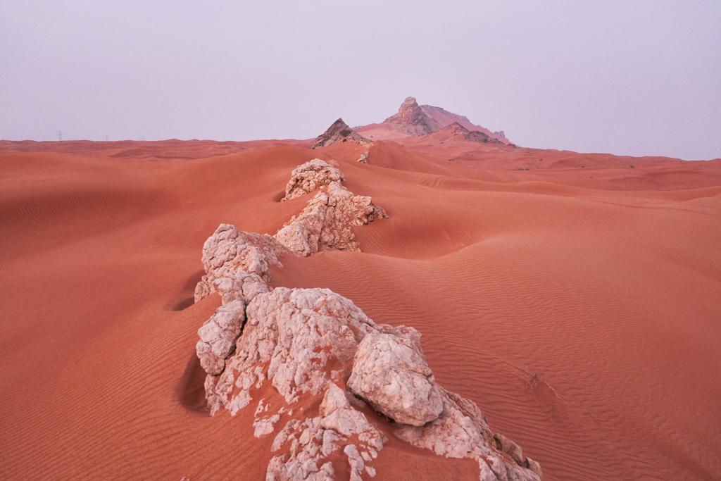 February Fresh - Desert UAE