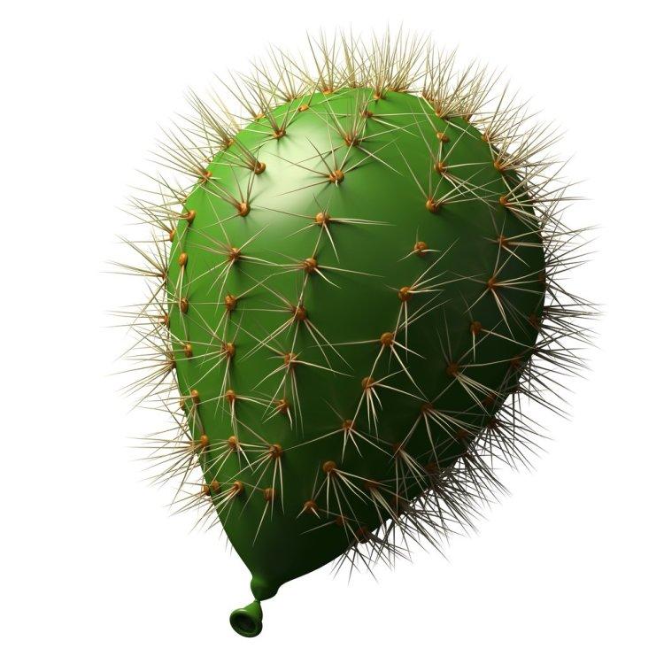 Cactus Balloon